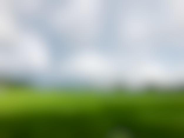 Le fond est flou des champs de riz et beau ciel.