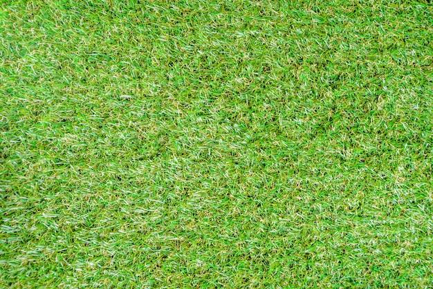 Fond d'été herbe verte
