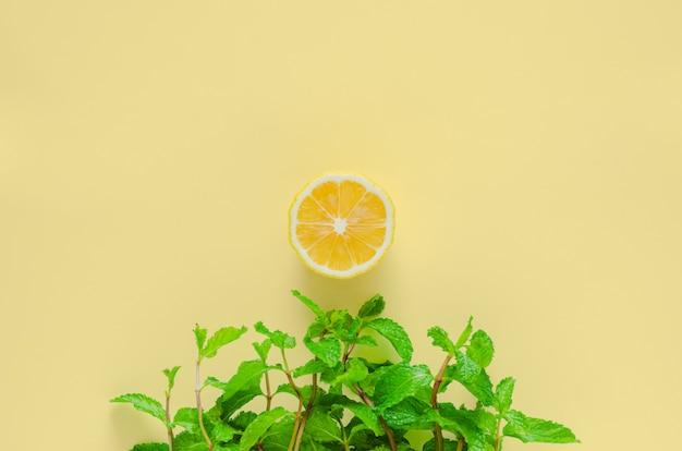 Fond d'été minimal créatif d'herbe faite de feuilles de menthe verte et de soleil de tranche de citron.