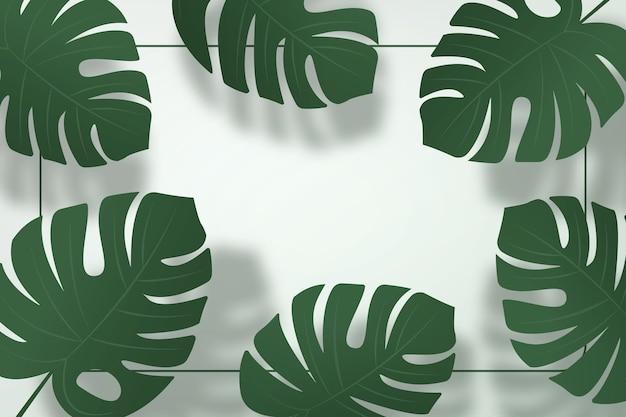 Fond d'été. ombre de feuilles de monstera sur fond de mur vert