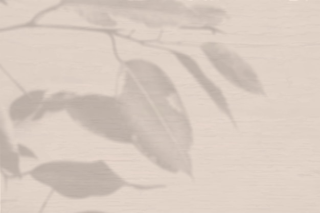 Fond d'été d'ombres végétales. ombre d'une plante exotique sur un mur de pêche. maquette.