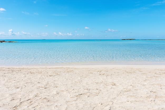 Fond d'été avec plage tropicale
