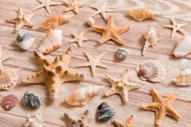 Fond d'étoiles de mer et de coquillages sur une table en bois, vue de dessus, mise à plat.