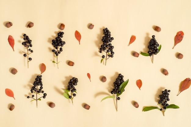 Fond de feuillage isolé. automne doré. composition. vue de dessus, plat poser, vue d'en haut