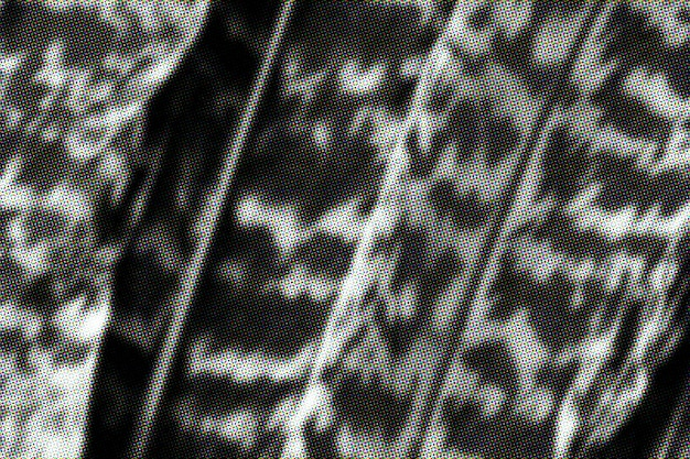 Fond de feuille de calathea zebrina noir et blanc