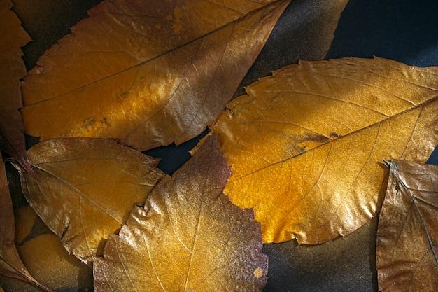 Fond de feuilles d'automne sur fond noir
