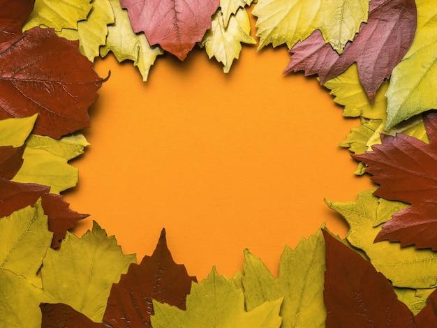 Fond de feuilles d'automne rouges et jaunes sur fond orange. espace pour le texte. mise à plat.