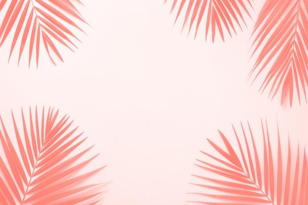 Fond de feuilles de palmier tropical. concept d'été minime.