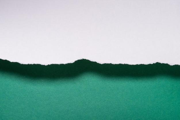 Fond de feuilles de papaercut vert, texturé