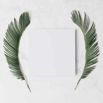 Fond de feuilles tropicales créatives. concept d'été minimal. mise à plat.