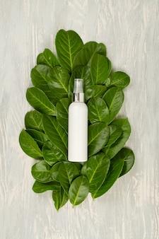 Fond avec des feuilles vertes et des plantes et une bouteille de cosmétique. concept de soin scin naturel