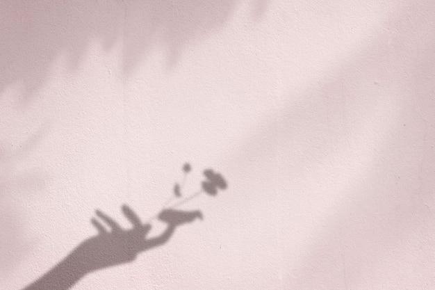 Fond avec fleur dans l'ombre de la main