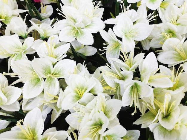 Fond de fleur d'orchidée blanche artificielle