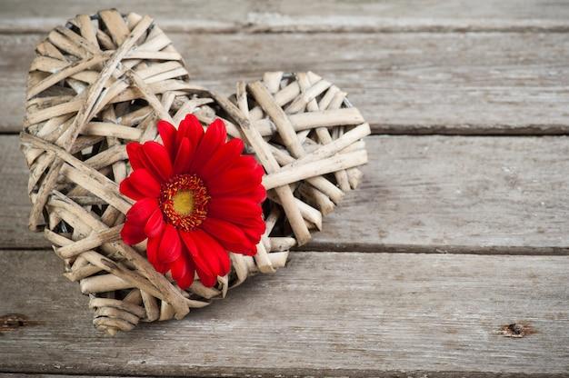 Fond avec fleur rouge