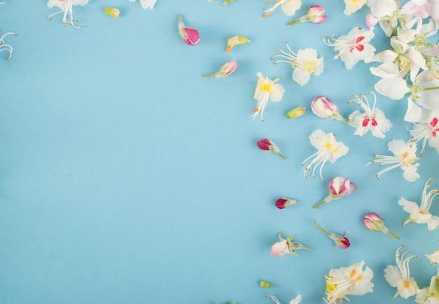 Fond de fleur sprinf