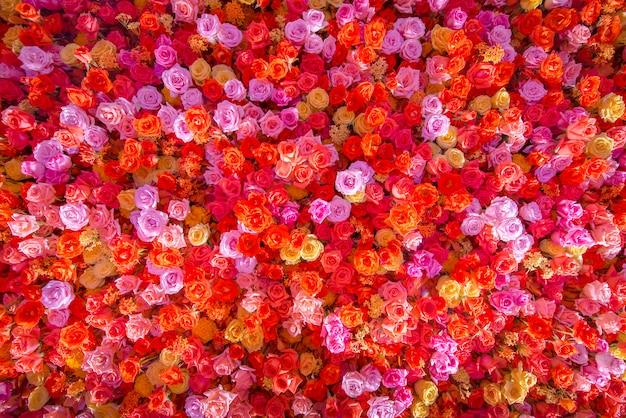 Fond de fleurs belles roses rouges naturelles pour des occasions spéciales.