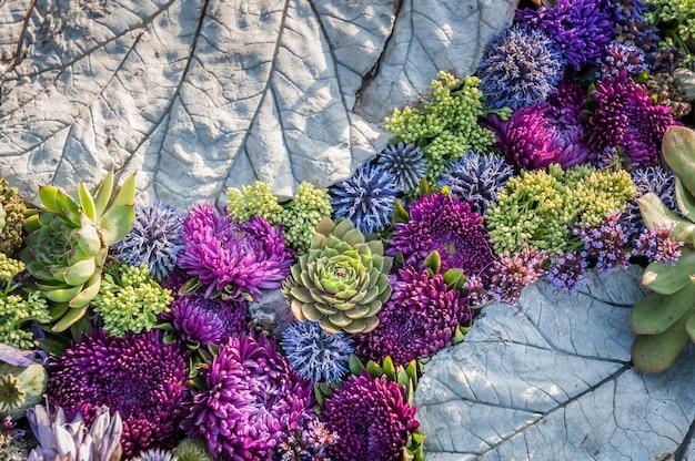 Fond de fleurs composition florale d'asters et de plantes succulentes pourpres.