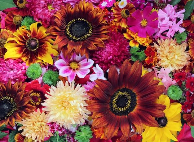 Fond de fleurs cultivées, la vue de dessus.