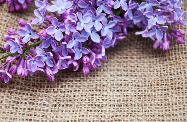 Fond de fleurs lilas
