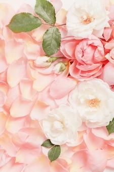 Fond de fleurs et pétales de rose