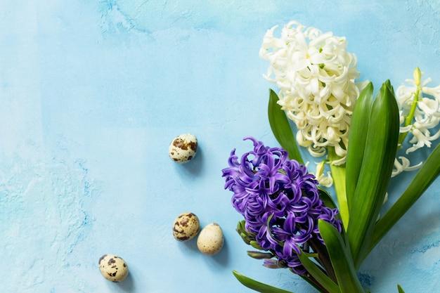 Fond de fleurs de printemps floral jacinthe blanche et bleue vue de dessus fond plat