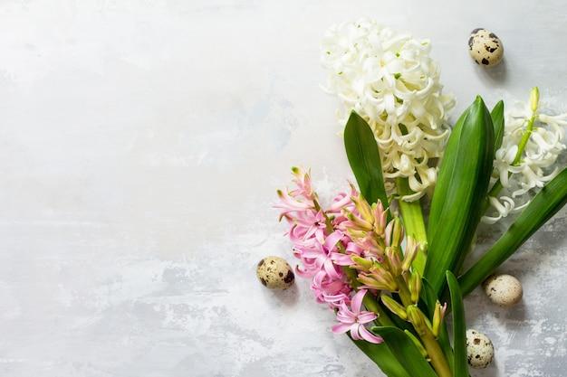 Fond de fleurs de printemps floral jacinthe blanche et rose vue de dessus fond plat