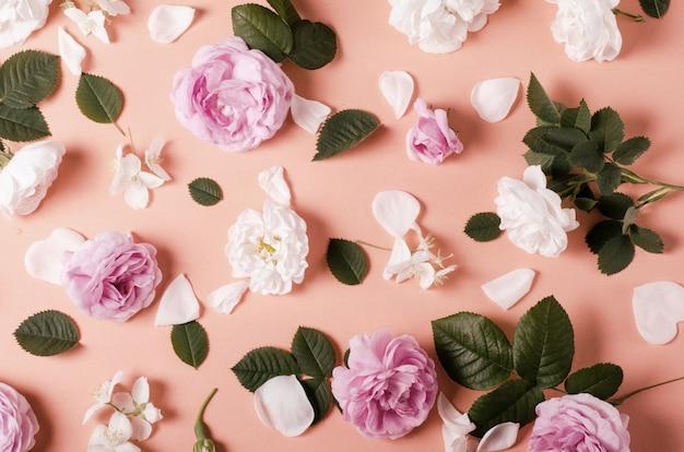 Fond de fleurs de roses de thé sur un rose tendre