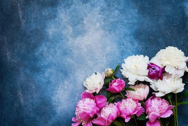 Fond floral avec de belles pivoines blanches roses