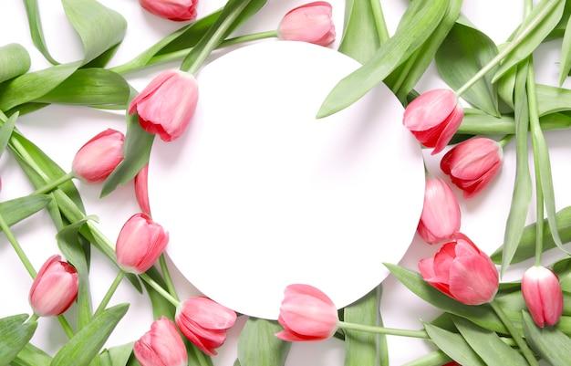 Fond floral avec des fleurs de tulipes sur fond blanc.