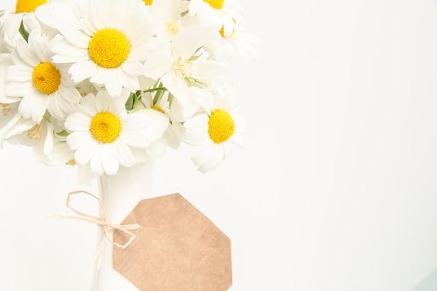 Fond floral avec des marguerites.