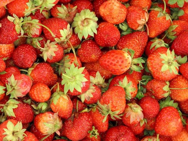 Fond de fraises fraîches et délicieuses