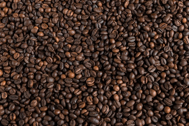 Fond de grains de café, mise en page avec copie espace