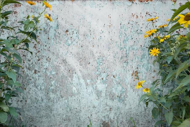 Fond grunge en détresse avec des fleurs sauvages sur les côtés.