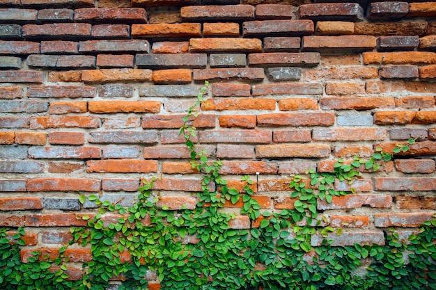 Fond grunge, mur de brique rouge texture mur de plâtre brillant et blocs route trottoir abandonné ext
