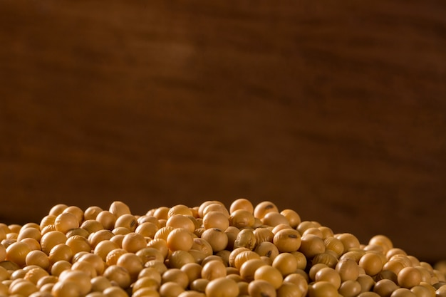 Fond de haricots de soja