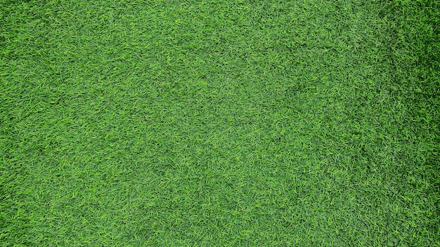 Fond d'herbe verte, terrain de football