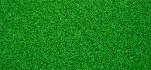 Fond d'herbe verte,