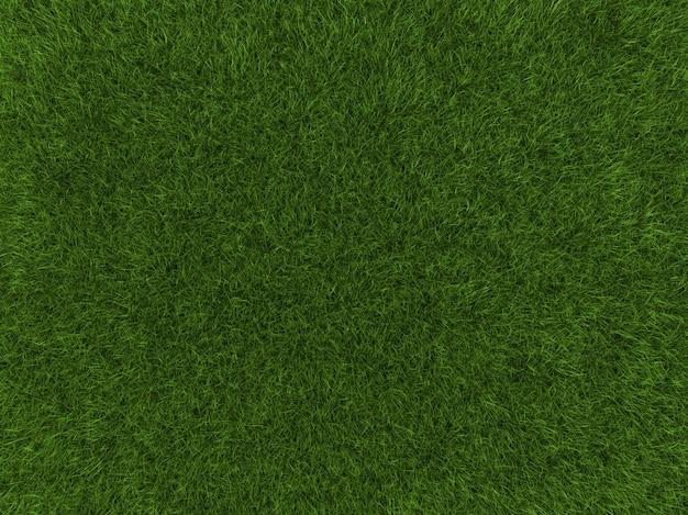 Fond d'herbe