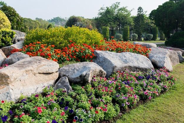 Fond de jardin de fleurs