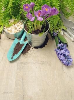 Fond de jardinage de printemps.