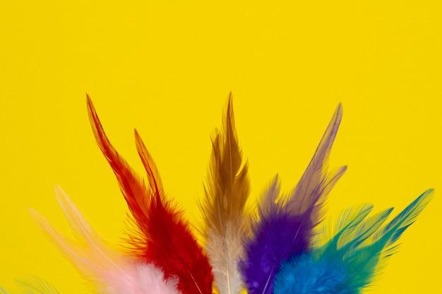 Fond jaune et différentes couleurs.