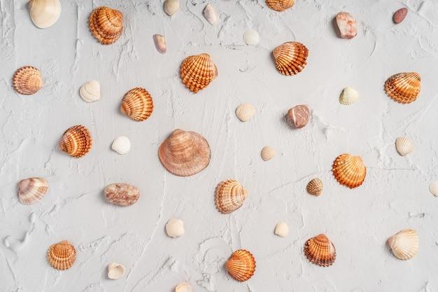 Fond de marbre avec des coquillages de mer. modèle de vacances