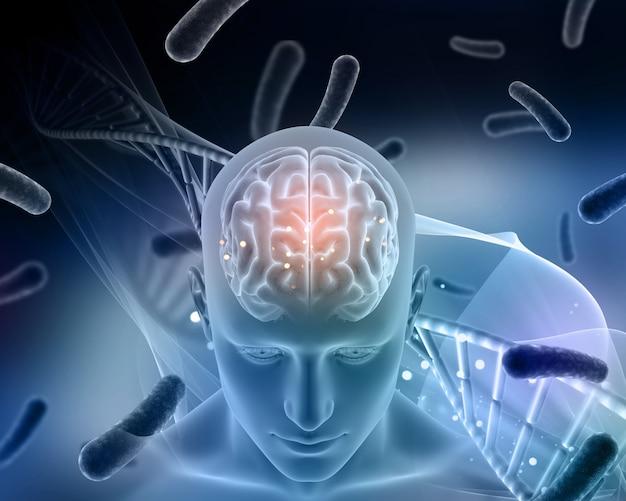 Fond médical 3d avec la figure masculine avec le cerveau en surbrillance