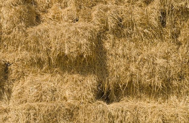 Fond de meules de foin dans un champ