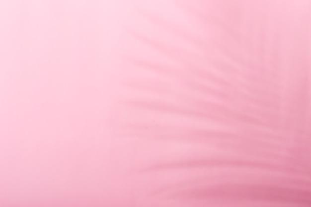 Fond monochrome tendance avec ombre de feuille tropicale en couleurs roses.