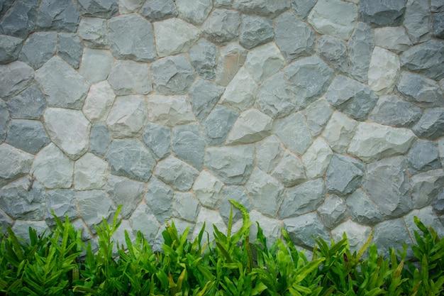 Fond de mur de briques blanches et feuille verte ci-dessous