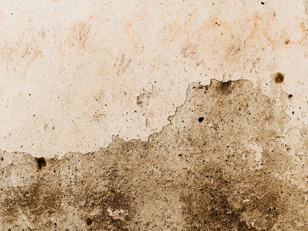 Fond de mur décollé