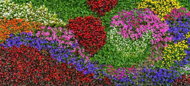 Fond de mur de fleurs et de plantes