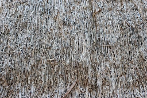 Fond de mur de texture de toiture de l'herbe brune sèche.