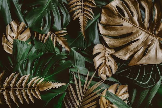 Fond de nature créative monstera tropical or et vert et feuilles de palmier abstrac d'été minimal